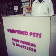 Sugar welcomes you to Pampered Pets, our Driver will park for free in our Parking basement. So you can enjoy your Shopping at Pampered Pets!