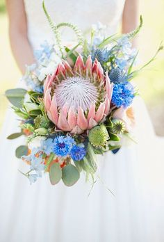 Brides: Modern Bouquet with Protea & Thistle. A modern bouquet comprised of king protea, thistle, delphinium, and eucalyptus, created by Posey Pop. Thistle Wedding, Protea Wedding, White Wedding Bouquets, Flower Bouquet Wedding, Floral Bouquets, Floral Wedding, Bouquet Bride, Protea Bouquet, Blue Bouquet