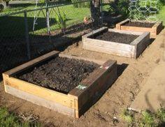How to grow in raised garden beds.