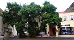 Saint Helena Island Info:Jamestown]