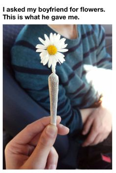 joints make a good present http://thestateofweed.tumblr.com/post/162208612832