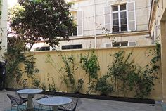 Boutique Azzedine Alaïa Paris, 5 rue de Marignan | Vertical Garden Patrick Blanc