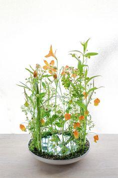 Small Flower Arrangements, Ikebana Flower Arrangement, Ikebana Arrangements, French Flowers, Green Flowers, Small Flowers, Flower Show, Flower Art, Deco Floral