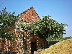 Velke BIlovice, South Moravia