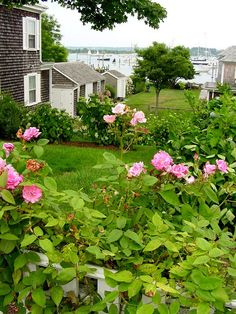 Edgartown harbor, Martha's Vineyard by love_m Marthas Vinyard, Vineyard Haven, Seaside Garden, New England Style, Beach Town, Beautiful Places To Visit, Beach Cottages, Cape Cod, The Good Place