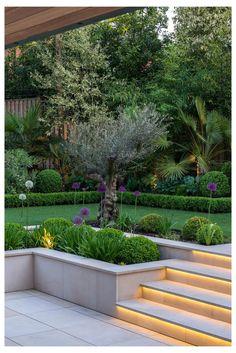 Small Gardens, Outdoor Gardens, Modern Gardens, Modern Garden Design, Contemporary Design, Modern Design, Contemporary Garden, Contemporary Apartment, Modern Patio