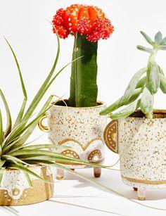 Trio planter set. Victoria smith Ceramics for Free People