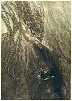 ✽ arthur rackham - 'the rhinegold'