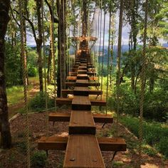 With warmer weather in the great northwest right around the corner, now's the time to start planning for fun in the sun. Here's one you'll definitely want to check out if you are in Oregon, and it's a short 35 miles from Portland sitting on Hagg Lake. It's known as Tree to Tree Adventure Park, an