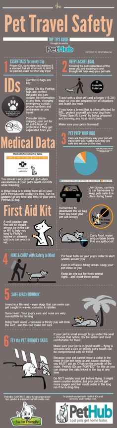 #Checklist for traveling with your pet - Share! #petsafety