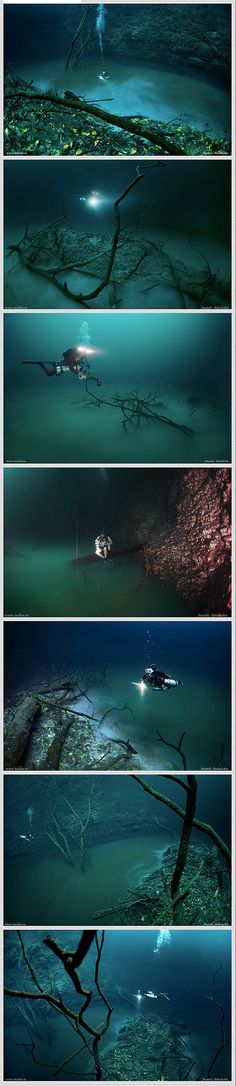 """Located in the Yucatan Peninsula in Mexico, there's a secret underwater river that can be found after a 10 to 15 minute drive south of Tulum. It is arguably the most unique formation of this kind: a thin layer of hydrogen sulfate separates the saltwater from the fresh water above it, allowing scuba divers to swim along this underwater creation. There are even fallen trees and leaves on both sides of the """"shores"""", making this seascape look all the more surreal!"""