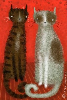 Salt & Pepper Cats   # Pinterest++ for iPad #