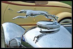 1933 Lincoln Greyhound mascot