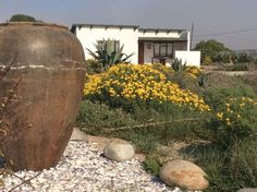 Honnehokke Resort at Hondeklipbaai on the South Africa West Coast. Self-catering chalets in the Northern Cape. Where2stay!
