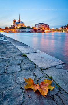 : Notre Dame, Paris, France