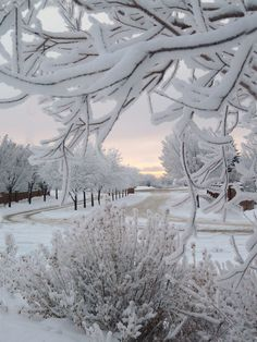 Stunning winter landscape