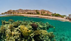 Eilat, Israel Travel Guide Guiddoo