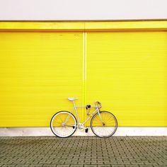 Mellow yellow | nikita00 | VSCO