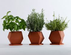 """Herb terracotta pot by Nick Fraser  """"Ideal for growing herbs and other small plants, Herb was designed with the windowsill garden in mind and comes with a drainage tray. Display in multiples and Herb's irregular form gives the illusion that each pot is unique, creating a landscape of contrasting shapes. Produced in the UK."""""""