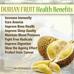 Durian Fruit Health Benefits