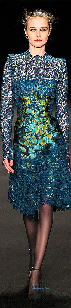 Monique Lhuillier ~ Fall Multi Blue Embroidered Dress 2015-16
