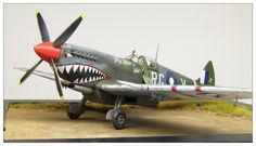 "Spitfire Mk.VIII ""Grey Nurse"" Eduard 1:48"