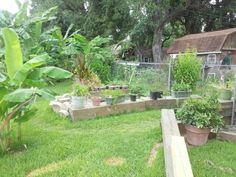 Walkway between two garden areas