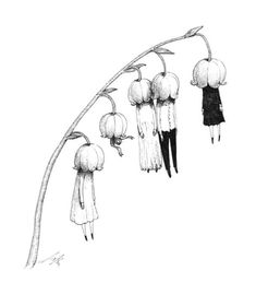 Flowers Black And White Illustration Anime Art 62 Ideas For 2019 Creepy Drawings, Dark Art Drawings, Creepy Art, Weird Art, Arte Horror, Horror Art, Horror Drawing, Art And Illustration, Black And White Illustration