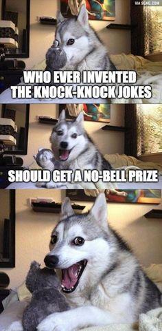 Pun dog strikes again