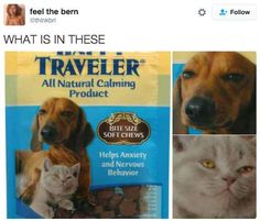 These high as hell pets: