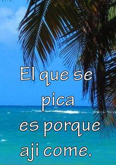 ☀ Puerto Rico ☀ More