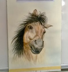 At Suluboyam. Horse my watercolor
