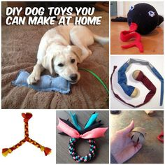 Our pup's favorite #homemade toy is dirty socks. But here's 37 Homemade Dog Toys you can #DIY