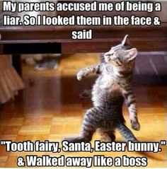 Get a break in the daily rutine and find a laugh at Monkey Memes! Funny pictures, hilarious quotes, lol and funny memes. Funny Animal Memes, Funny Animal Pictures, Funny Animals, Cute Animals, Cat Memes Hilarious, Animal Captions, Funny Captions, Funny Memes For Kids, Jw Jokes
