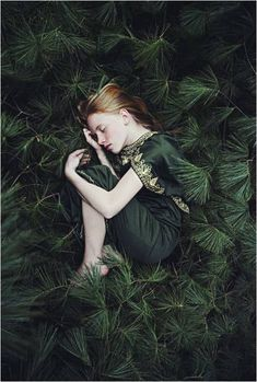 she hid in plain sight, huddled amongst the pine leaves