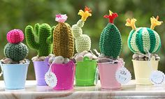Crochet blooming cactus in colorful tin pails plants by TomToy