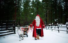 Santa Claus   Santa Claus prepares a reindeer and sled in Santa Park near Rovaniemi ...