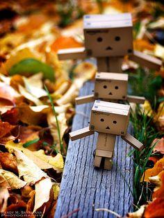 I love walks in the fall...