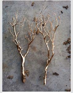 Good twigs