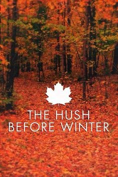 The hush before winter... This is what I was thinking today! It is finally here, the calm and the peace...hello November!