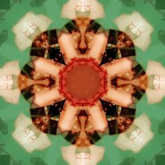 an e.t. kaleidoscope