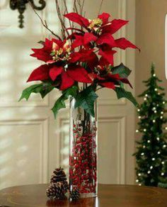 Poinsettia has the most lovely color of leaves and really suitable for christmas. It is also flexible to decorate poinsettia plants for your home Christmas Vases, Christmas Flower Arrangements, Christmas Flowers, Christmas Table Decorations, Noel Christmas, Christmas Projects, Christmas Wreaths, Poinsettia Flower, Christmas Centrepieces