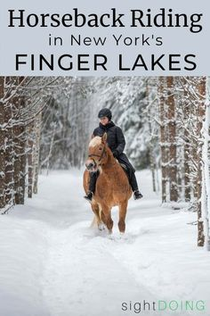 If you want to go horseback riding in the Finger Lakes NY, Painted Bar Stables on Seneca Lake (near Watkins Glen) is a great choice for spectacular scenery and personalized rides. New York Travel, Travel Usa, Travel Tips, Seneca Lake, New York Winter, Watkins Glen, Us Road Trip, Finger Lakes, Before Sunset