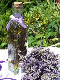 Bird Feeders, Herbalism, Glass Vase, Herbs, Homemade, Purple, Outdoor Decor, Beauty, Hama