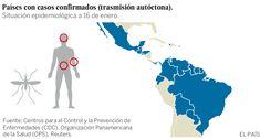 Diez preguntas y respuestas sobre el virus zika