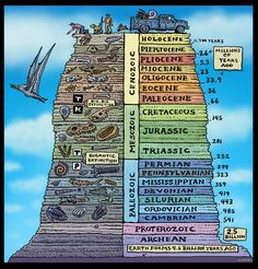 Fossils by Ray Troll. How can the vastness of Geologic Time be represented in art? This piece by Ray Troll is a whimsical depiction of the Geologic Time Scale, using fossils as markers of time. History Of Earth, World History, Earth Science, Science And Nature, Ingenieur Humor, History Timeline, Science Classroom, Climate Change, Social Studies