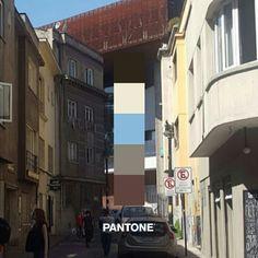 Pantone Proyecto Urbano #4