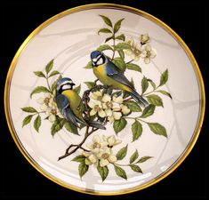 Синица Vintage Plates, Vintage Birds, Cottage Art, Teapots And Cups, China Painting, Dresden, Porcelain Ceramics, Ursula, Fabric Painting