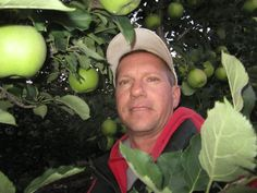 Apples are big and ready Orchards, Apples, Big, Apple, Fruit Tree Garden