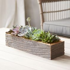 "A terrain exclusive collection of living, tender succulents fills this reclaimed wood trough that serves as a green and growing centerpiece. $110 small Water thoroughly. Planter is not water tight and should be watered where it can freely drain (in a sink or tray). Allow soil to dry lightly between waterings. Water 1-2 times per week, depending on sun exposure and temperature. Small: 3""H, 4""W, 14""L Large: 3""H, 4""W, 24""L"
